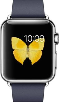 Apple Watch Stainless Steel Case with Modern Buckle - 38mm