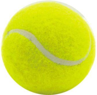 Pepup Super Cricket Ball