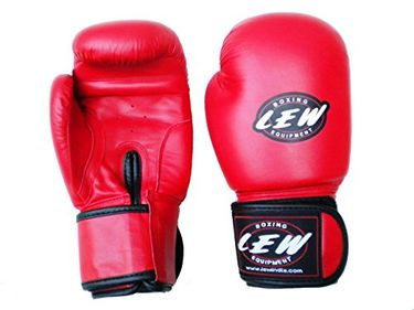 LEW Pro Competition Gloves With Hand Wraps 10 Oz