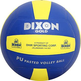 Dixon Gold Volleyball